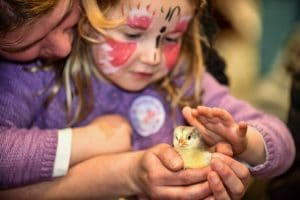 Springtime Live organised by the Yorkshire Agricultural Society