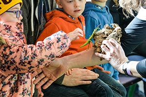 FREE hands on activities for the kids at Countryside Live
