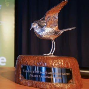 Silver Lapwing Award
