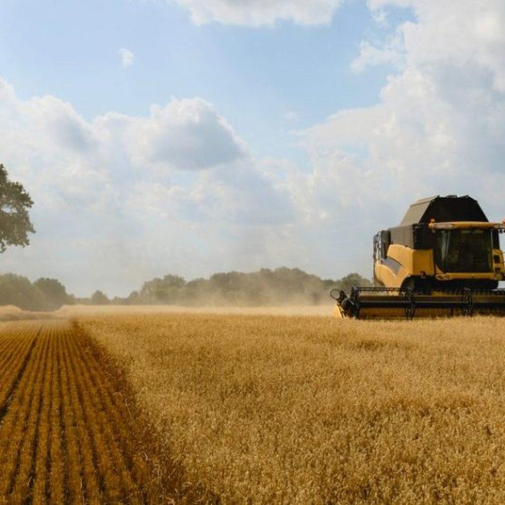 Free farm business training
