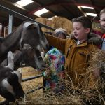 Farm to Fork visit
